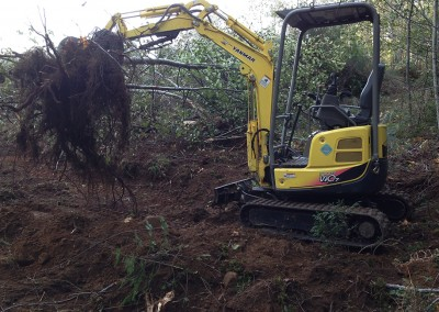 Dirty Digger Contracting Clearing and Landscaping